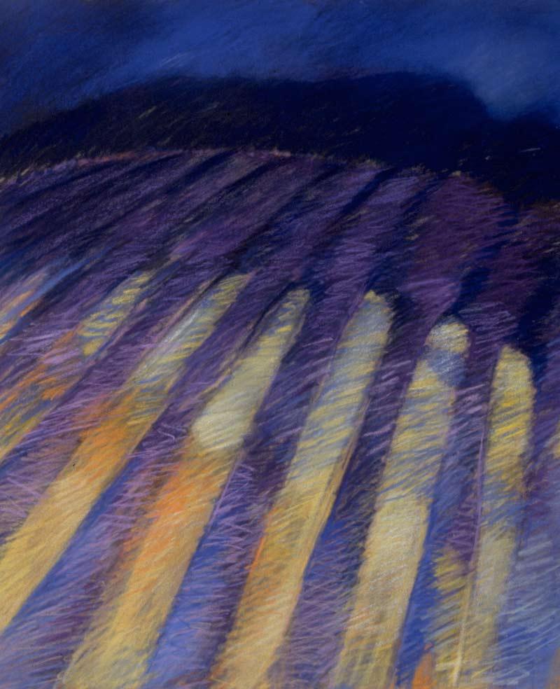Siembras, 1991 Acrílico, 62x56 cm